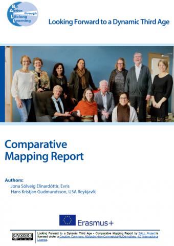 Mapping Report Screenshot